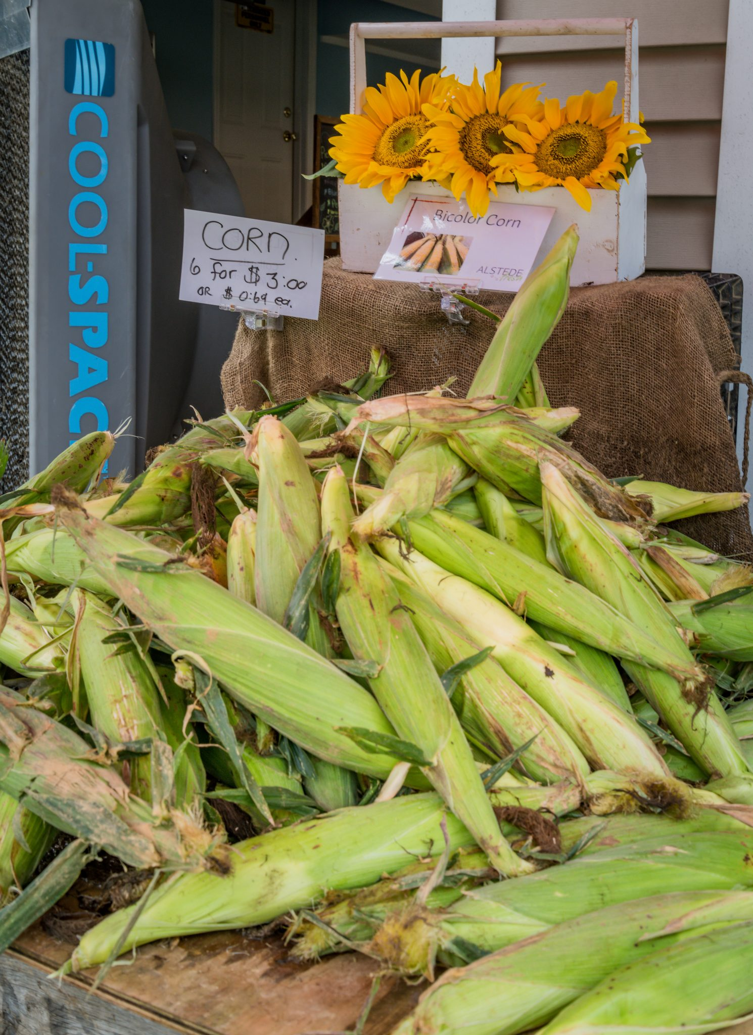 Alstede Farms, Exterior, Fresh Corn, 2019, Farm, Recreation, Farm