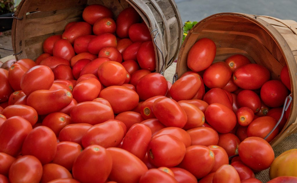 Alstede Farms, Exterior, Tomatoes in barrel, 2019, Farm, Recreation, Farm