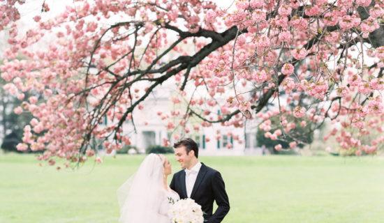 Frelinghuysen Arboretum wedding bride groom cherry tree