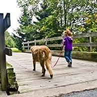 Walking dog in Hedden Park