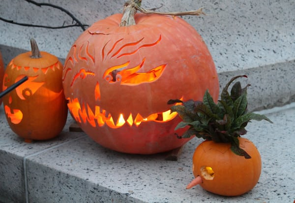 Three decorated carved pumpkins