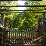 wooden gate outdoors surrounded by nature