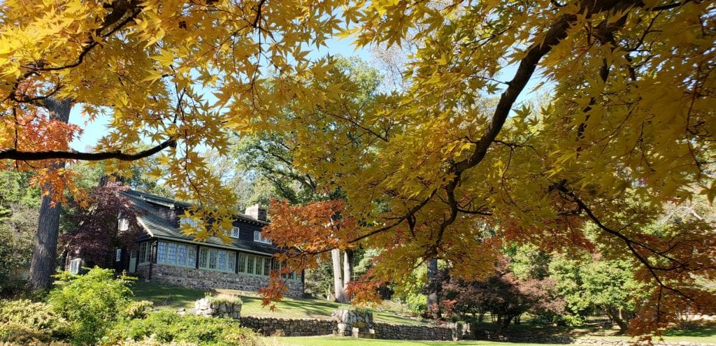 Fall leaves at Stickley Museum