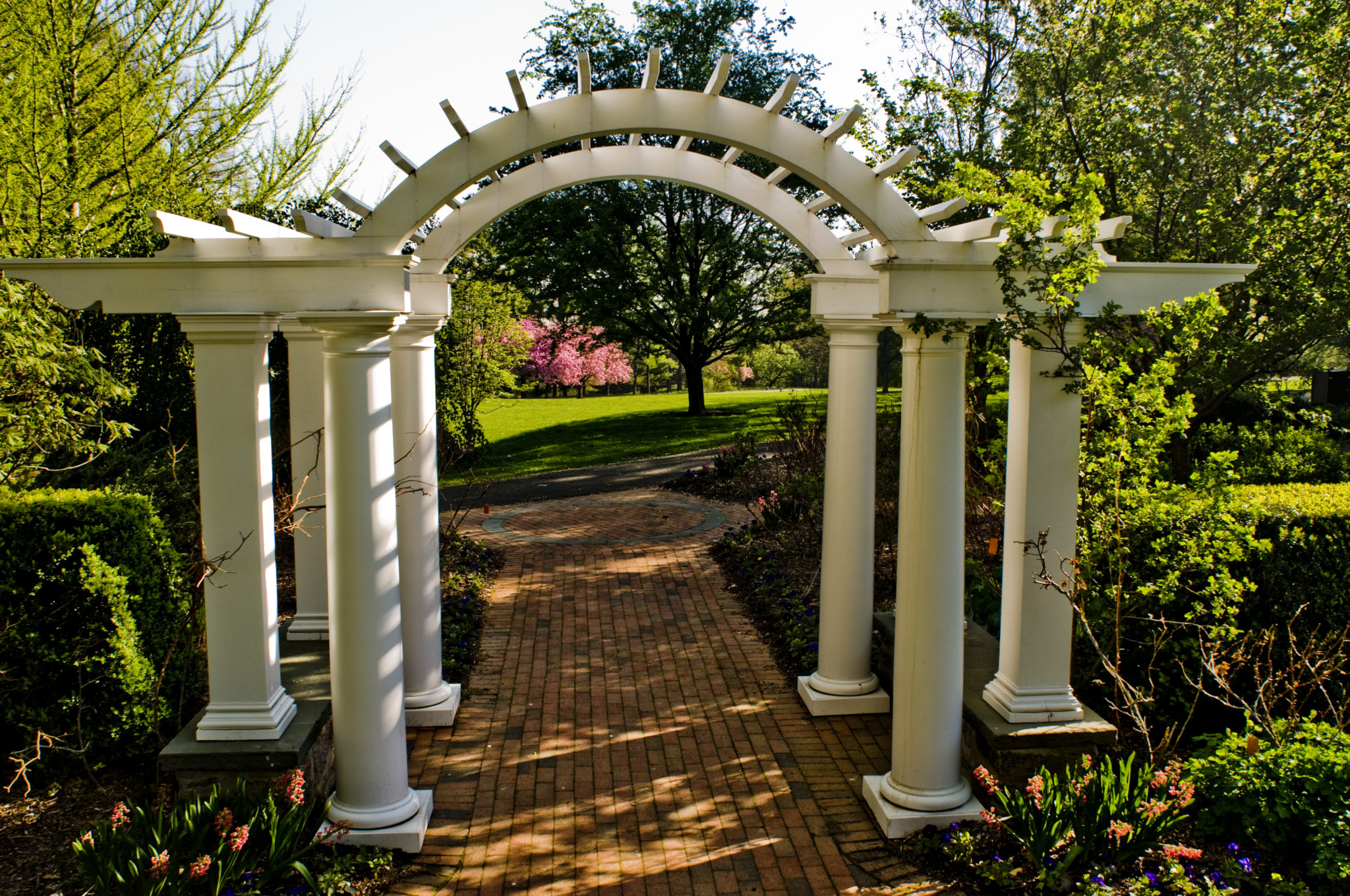 An external view of the white arbor and brick path at the Freylinghuysen arboritum.