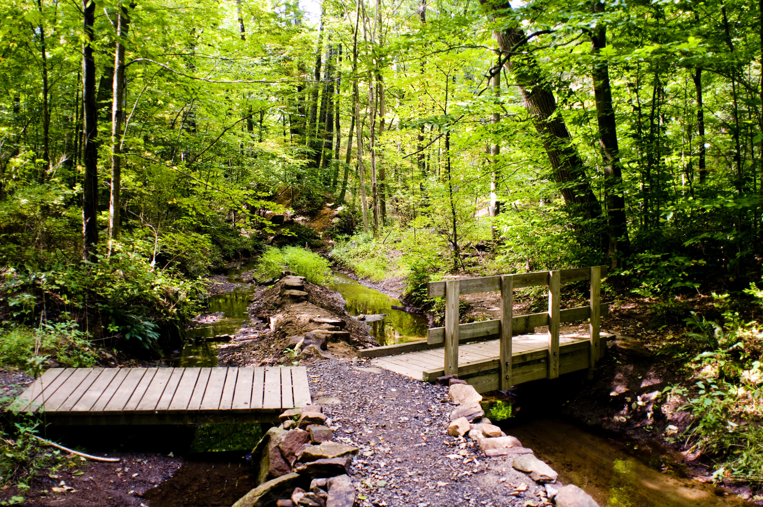 morris county hiking trails